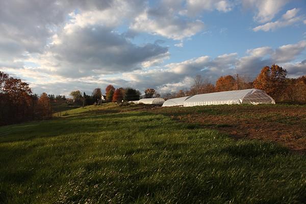 barrel ridge farm