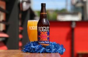 Rogue Paradise 640x430